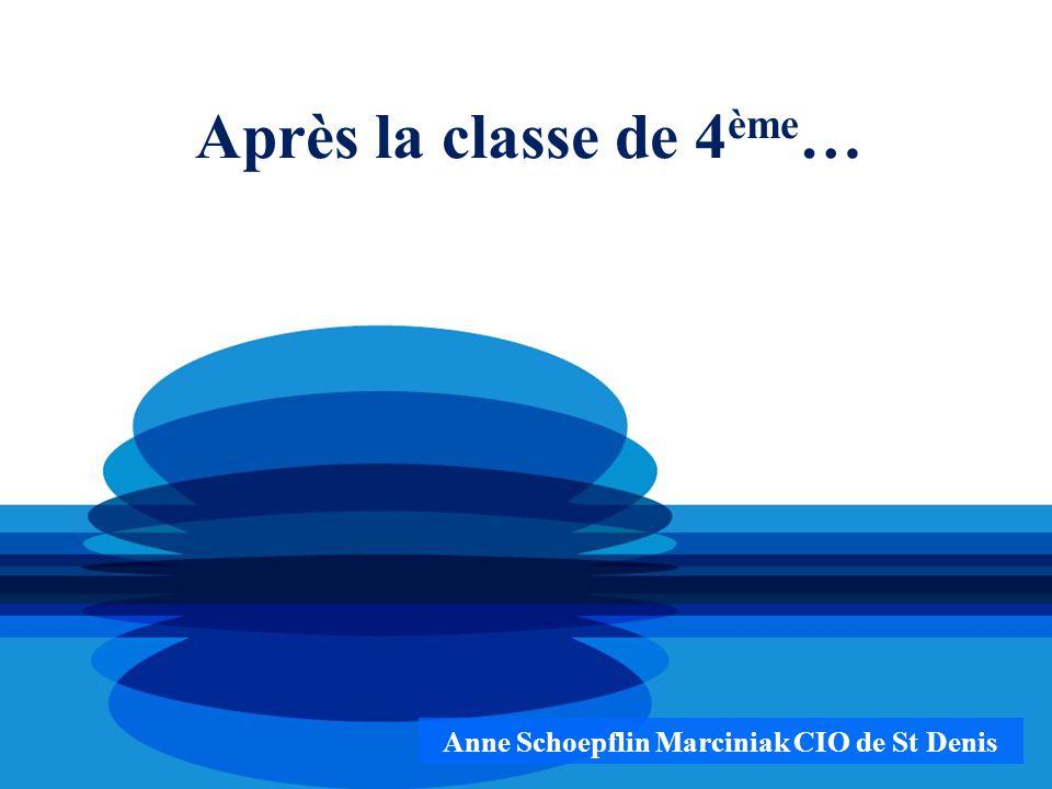 Anne Schoepflin Marciniak CIO de St Denis