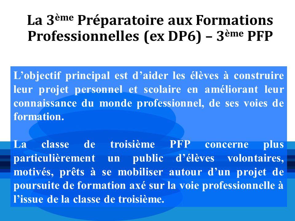 La 3ème Préparatoire aux Formations Professionnelles (ex DP6) – 3ème PFP