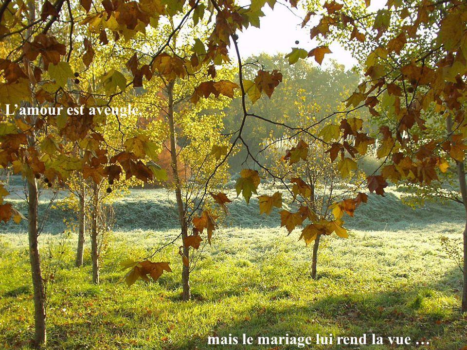 L'amour est aveugle, mais le mariage lui rend la vue …