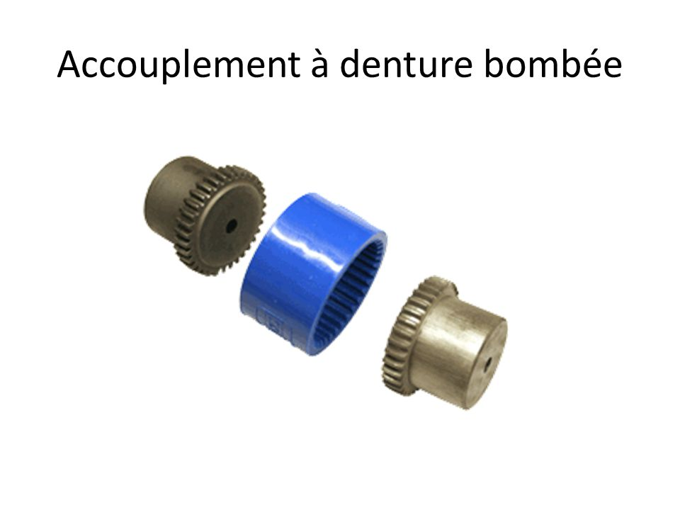Accouplement à denture bombée