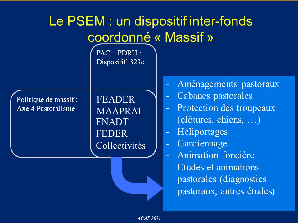 Le PSEM : un dispositif inter-fonds coordonné « Massif »