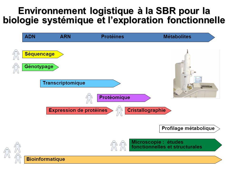 Environnement logistique à la SBR pour la biologie systémique et l'exploration fonctionnelle