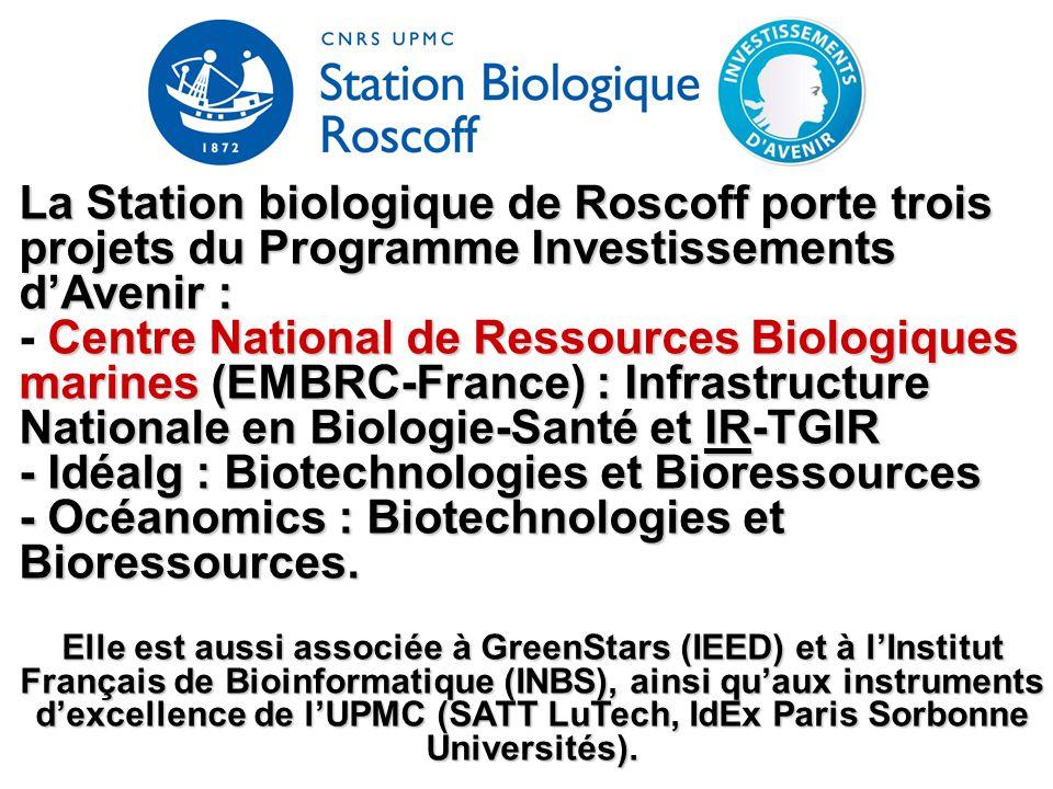 - Idéalg : Biotechnologies et Bioressources