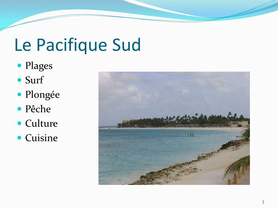 Le Pacifique Sud Plages Surf Plongée Pêche Culture Cuisine