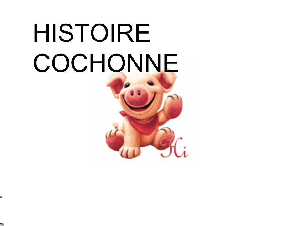 HISTOIRE COCHONNE