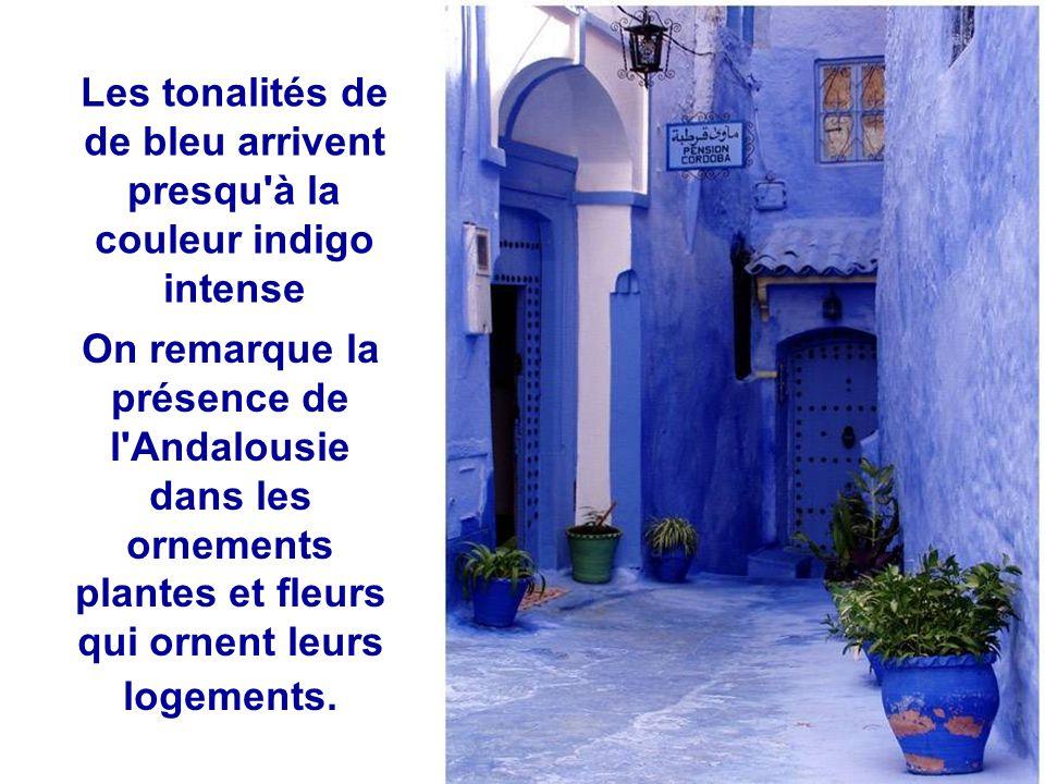 Les tonalités de de bleu arrivent presqu à la couleur indigo intense