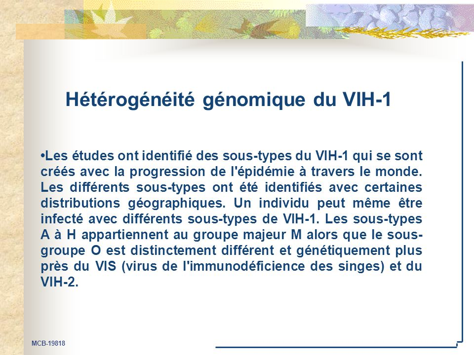 Hétérogénéité génomique du VIH-1