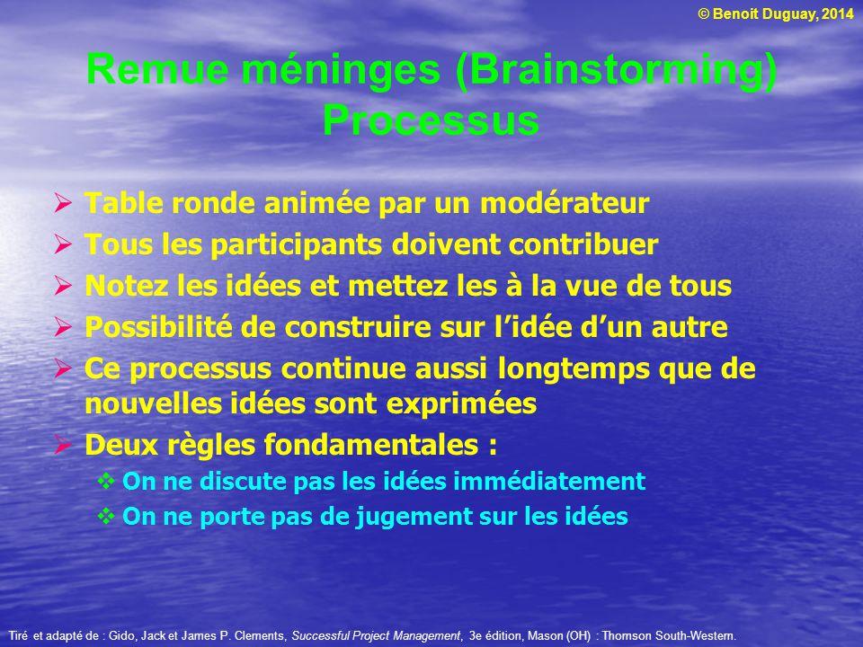 Remue méninges (Brainstorming) Processus