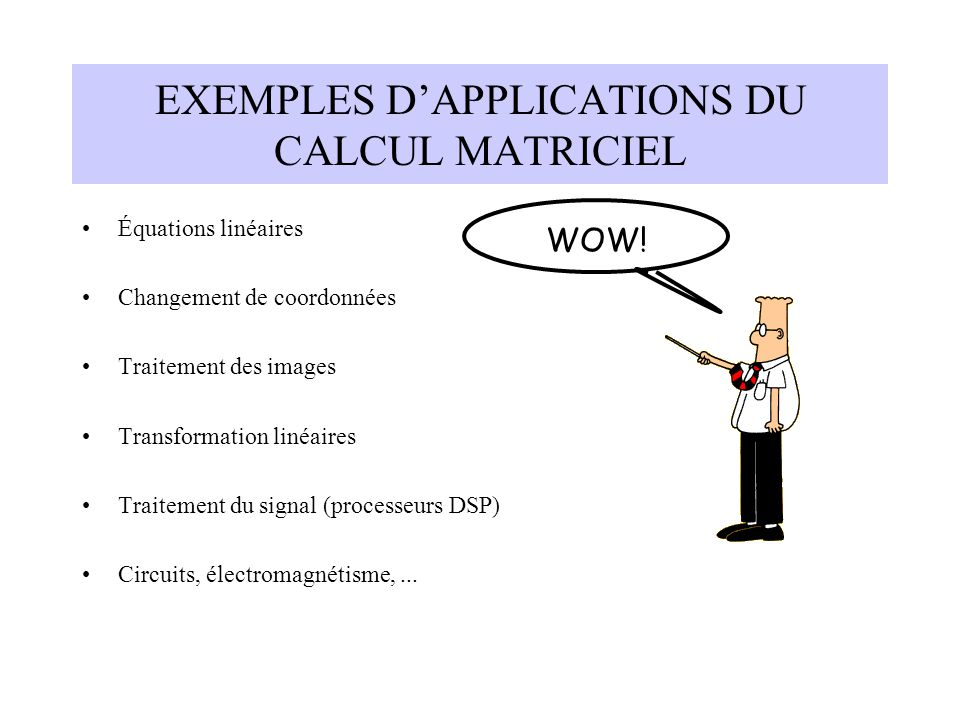 EXEMPLES D'APPLICATIONS DU CALCUL MATRICIEL