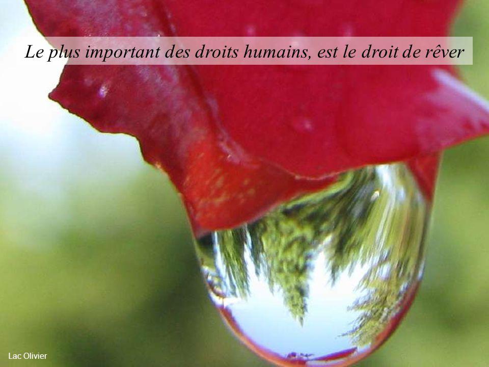 Le plus important des droits humains, est le droit de rêver