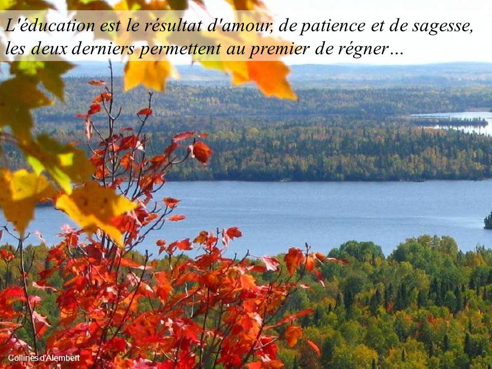 L éducation est le résultat d amour, de patience et de sagesse, les deux derniers permettent au premier de régner…