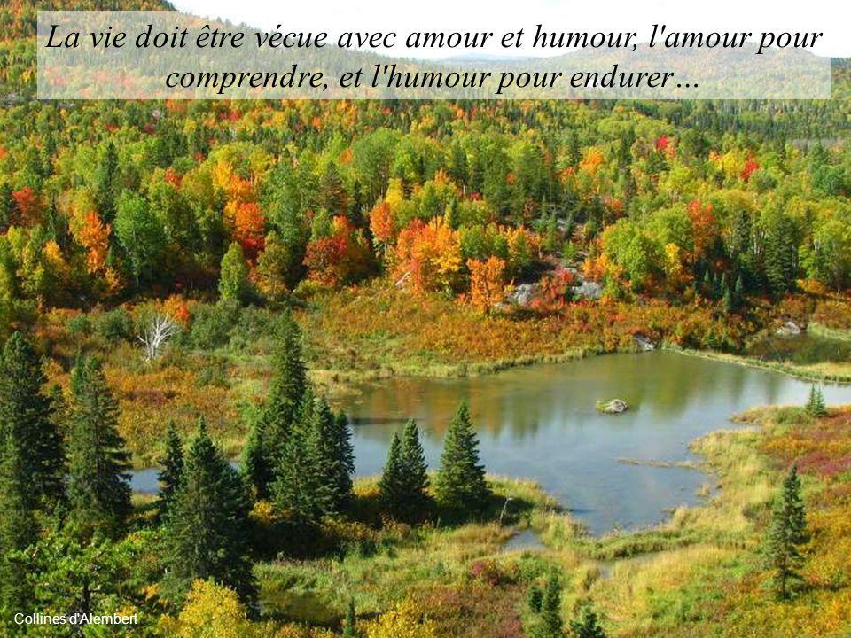 La vie doit être vécue avec amour et humour, l amour pour comprendre, et l humour pour endurer…