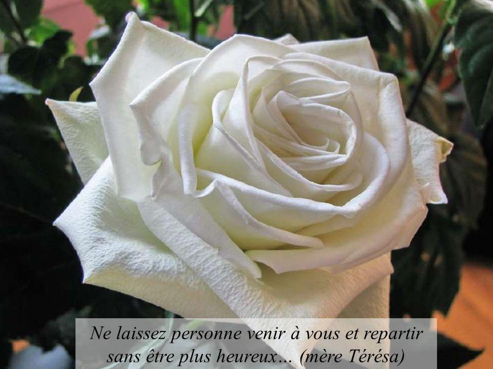 Ne laissez personne venir à vous et repartir sans être plus heureux… (mère Térésa)