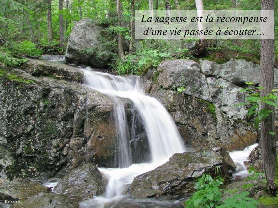 La sagesse est la récompense d une vie passée à écouter…
