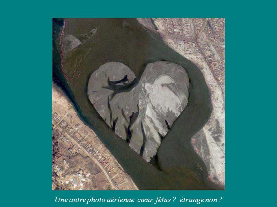 Une autre photo aérienne, cœur, fétus étrange non