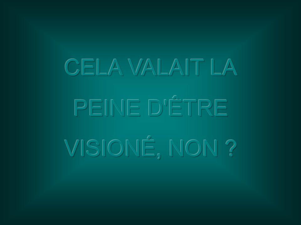 CELA VALAIT LA PEINE D ÊTRE VISIONÉ, NON