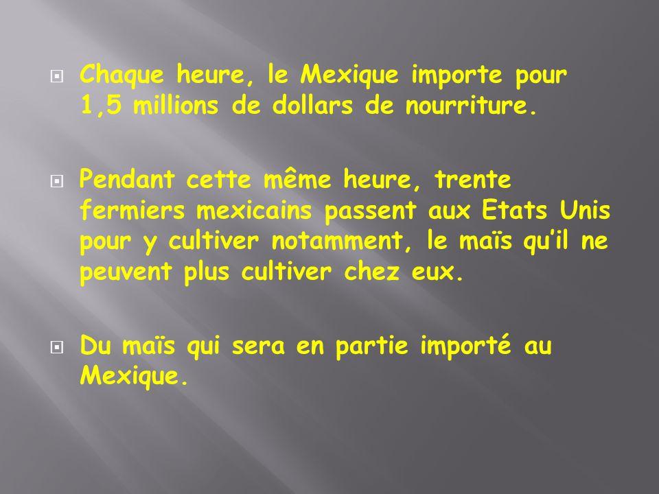 Chaque heure, le Mexique importe pour 1,5 millions de dollars de nourriture.