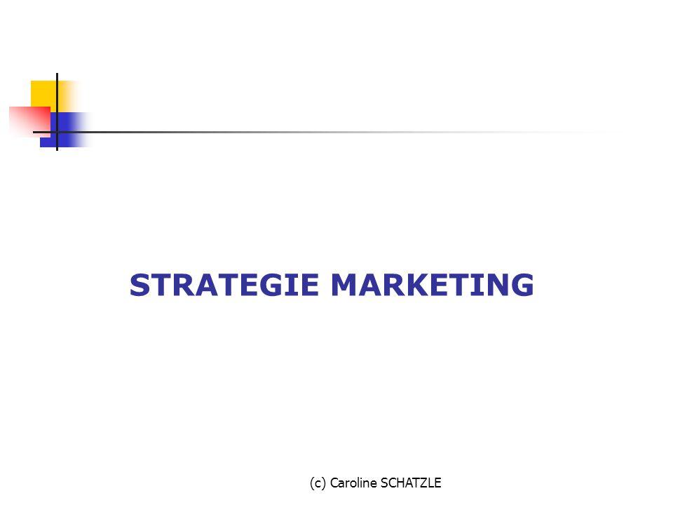 STRATEGIE MARKETING (c) Caroline SCHATZLE