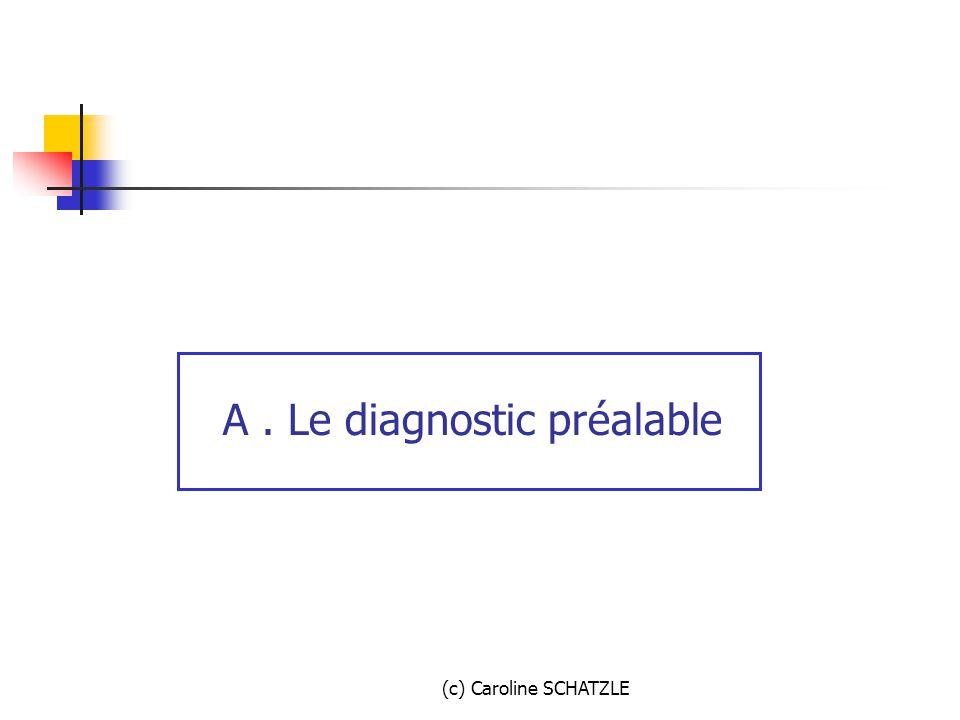 A . Le diagnostic préalable