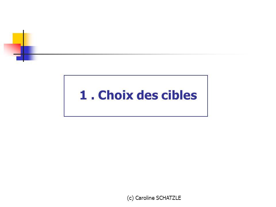 1 . Choix des cibles (c) Caroline SCHATZLE