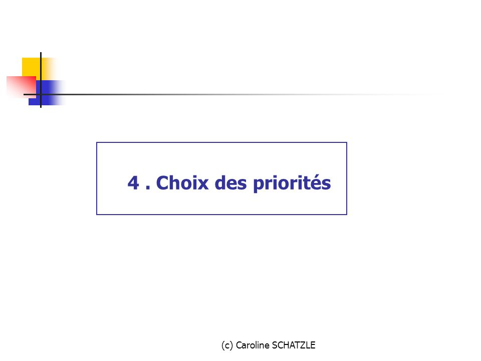 4 . Choix des priorités (c) Caroline SCHATZLE