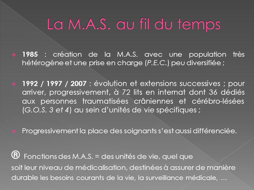 La M.A.S. au fil du temps 1985 : création de la M.A.S. avec une population très hétérogène et une prise en charge (P.E.C.) peu diversifiée ;
