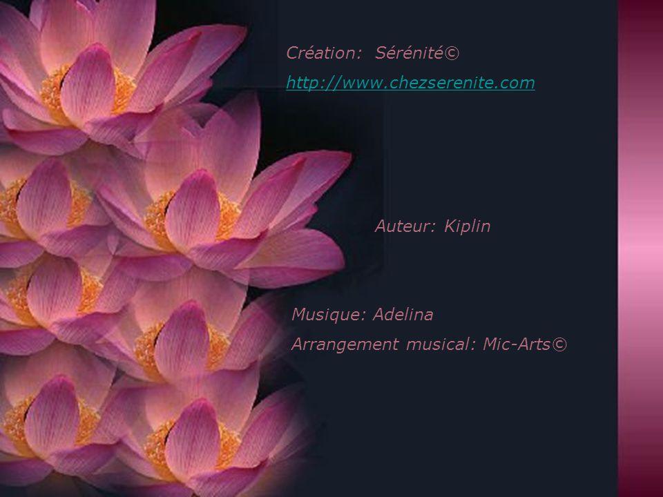 Création: Sérénité© http://www.chezserenite.com. Auteur: Kiplin.