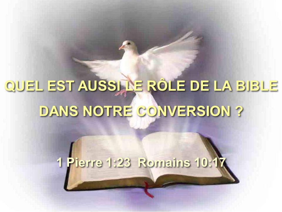 QUEL EST AUSSI LE RÔLE DE LA BIBLE