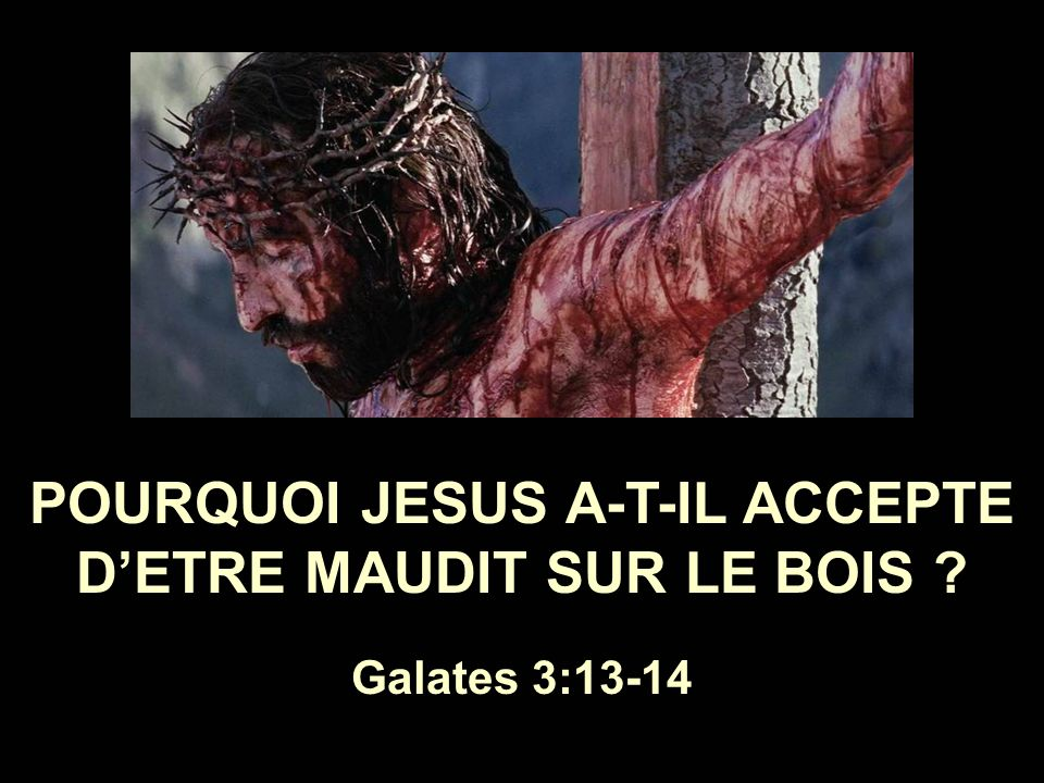 POURQUOI JESUS A-T-IL ACCEPTE D'ETRE MAUDIT SUR LE BOIS