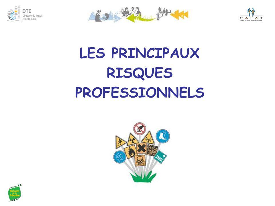 LES PRINCIPAUX RISQUES PROFESSIONNELS