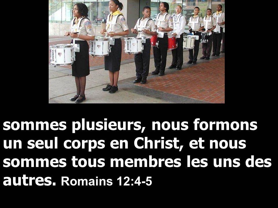 sommes plusieurs, nous formons un seul corps en Christ, et nous sommes tous membres les uns des autres.