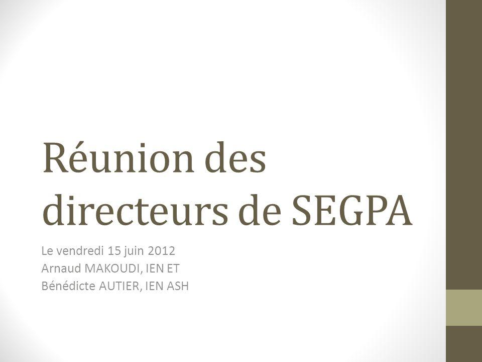 Réunion des directeurs de SEGPA