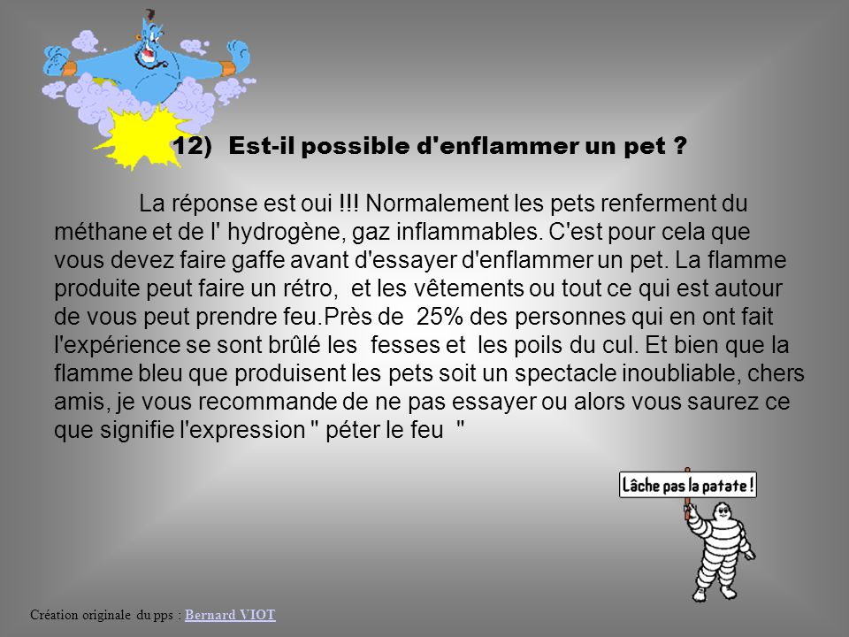 12) Est-il possible d enflammer un pet