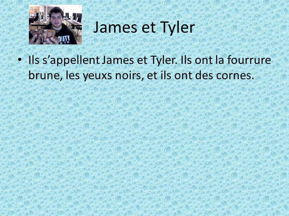 James et Tyler Ils s'appellent James et Tyler.