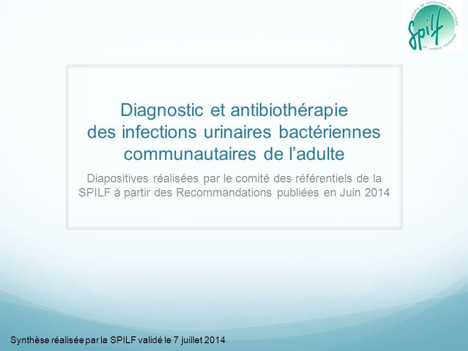 Diagnostic et antibiothérapie des infections urinaires bactériennes communautaires de l'adulte