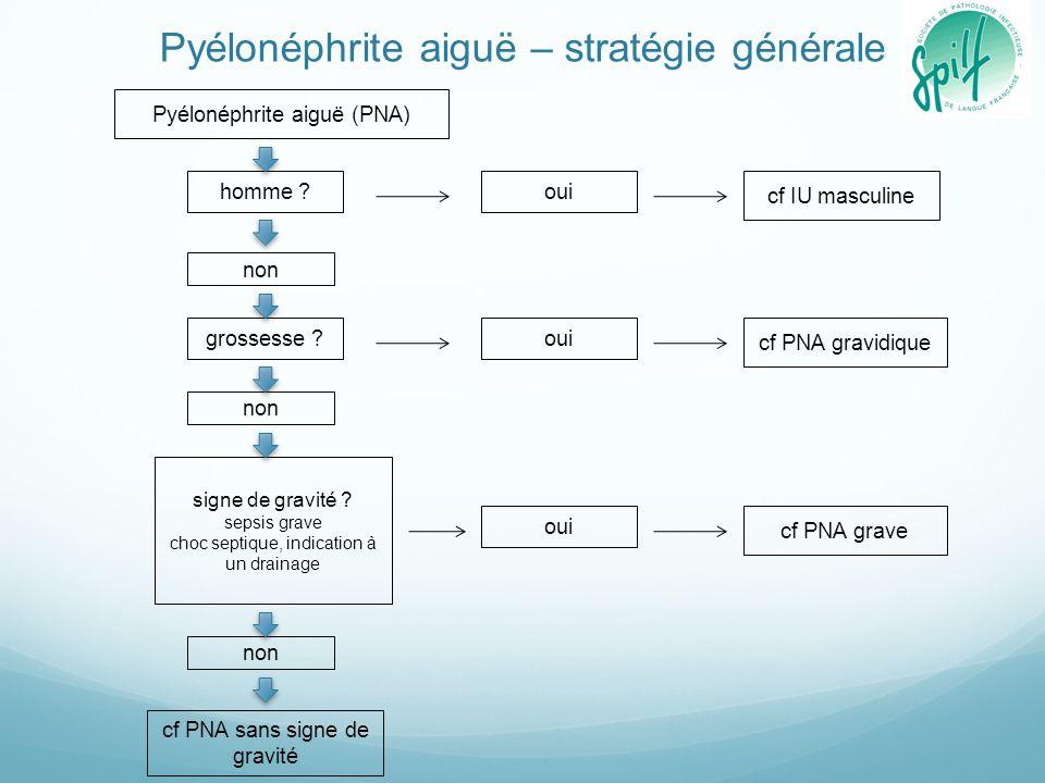 Pyélonéphrite aiguë – stratégie générale