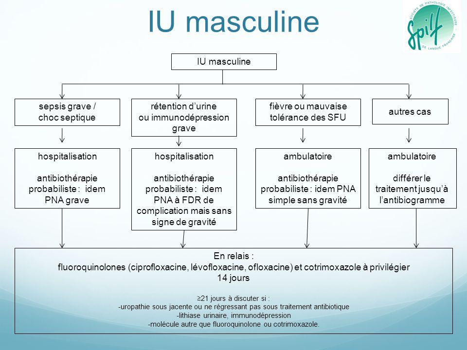 IU masculine IU masculine sepsis grave / choc septique