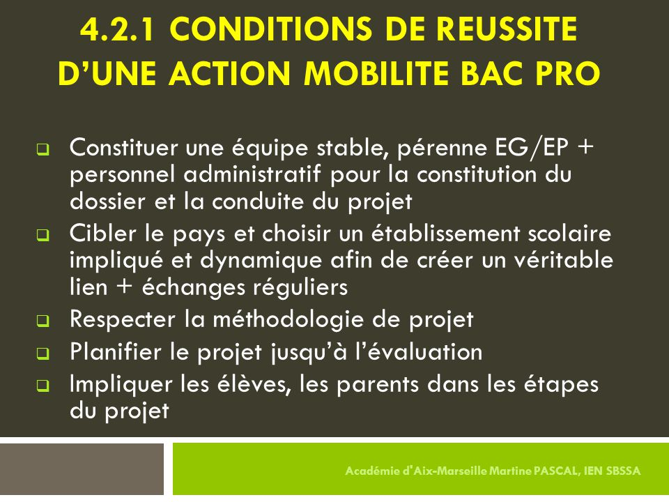 4.2.1 CONDITIONS DE REUSSITE d'UNE ACTION MOBILITE BAC PRO
