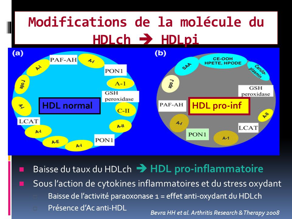 Modifications de la molécule du HDLch  HDLpi