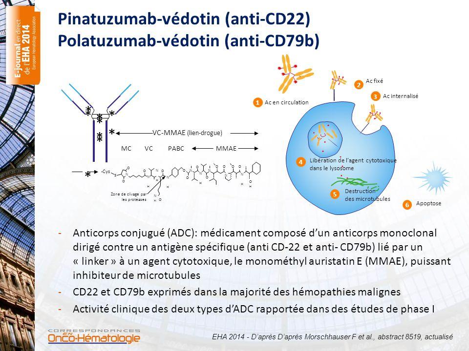 Pinatuzumab-védotin (anti-CD22) Polatuzumab-védotin (anti-CD79b)