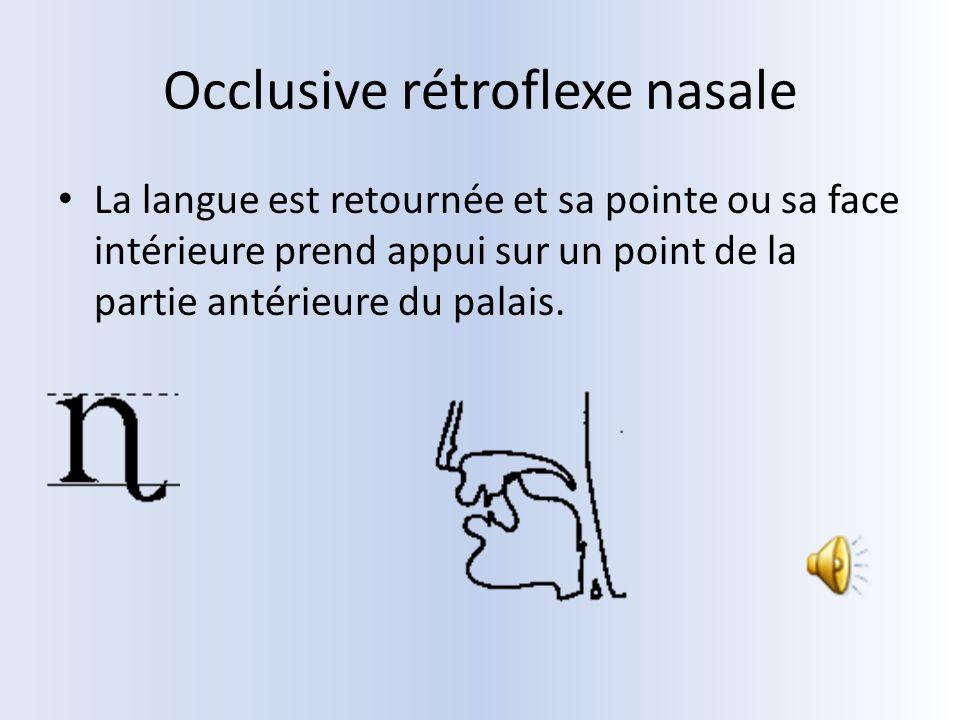 Occlusive rétroflexe nasale