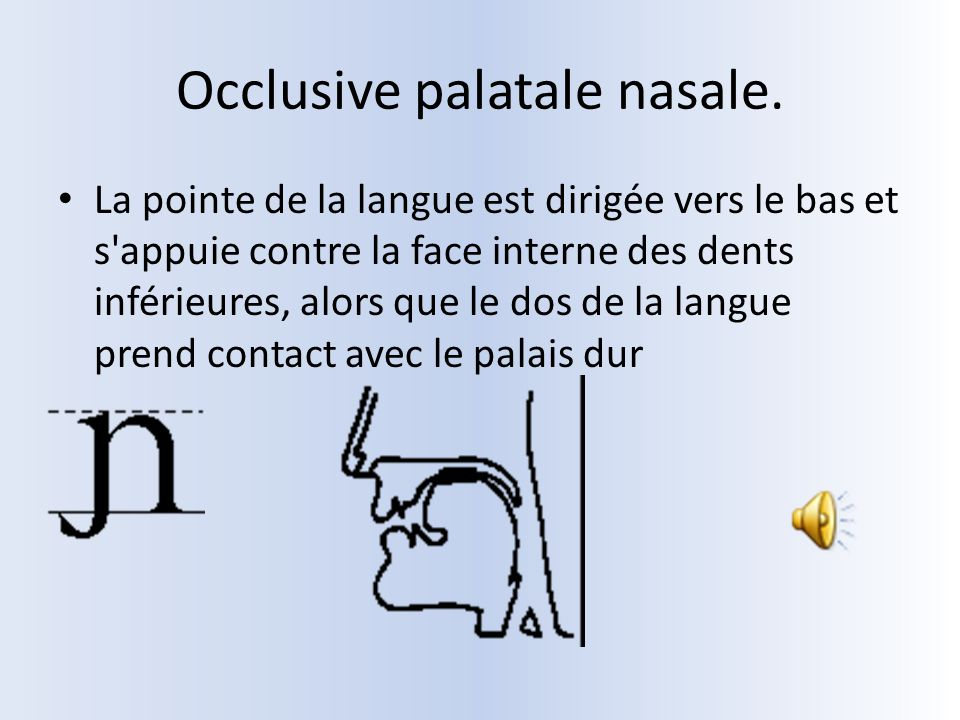 Occlusive palatale nasale.