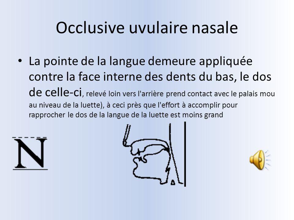 Occlusive uvulaire nasale