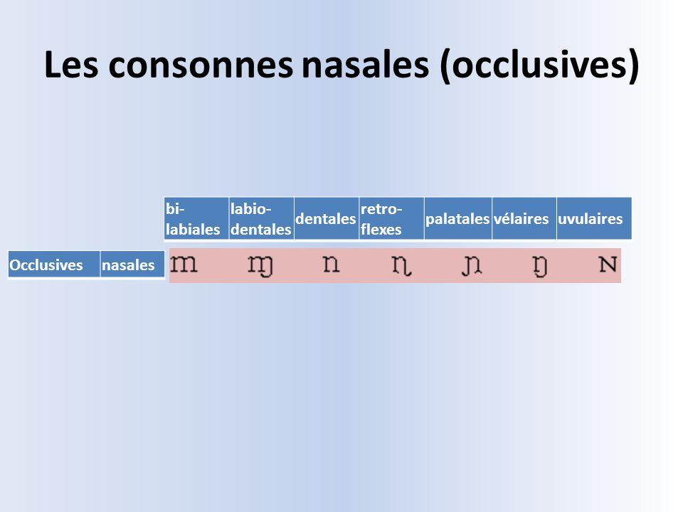 Les consonnes nasales (occlusives)