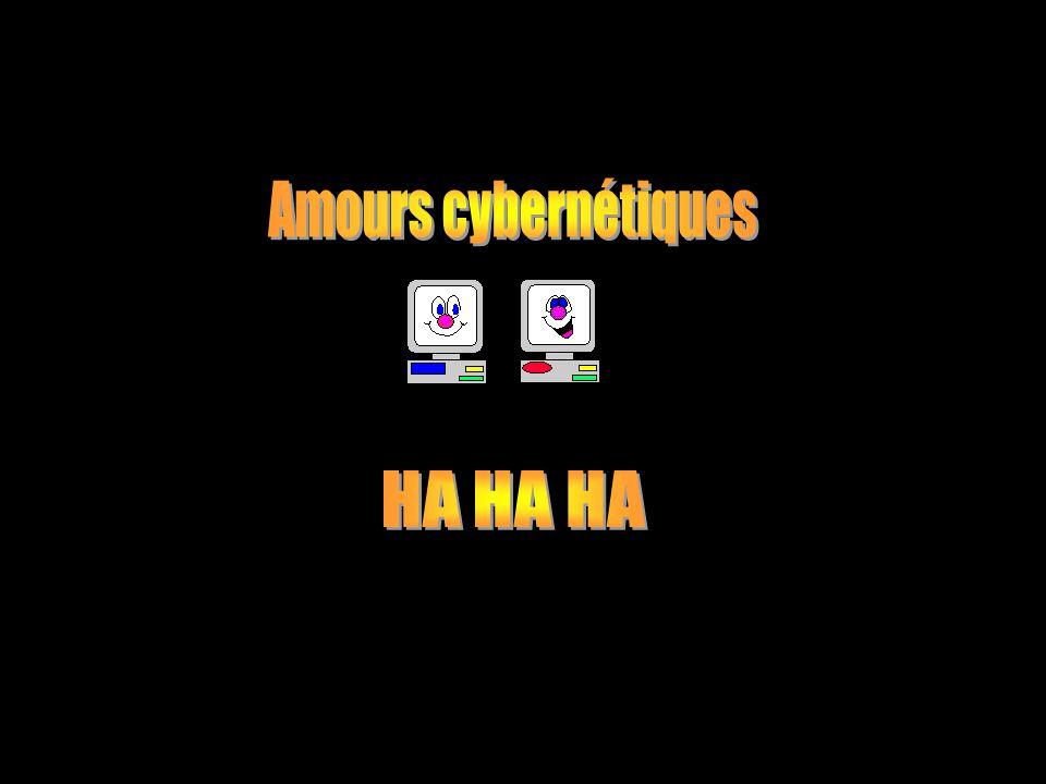 Amours cybernétiques HA HA HA