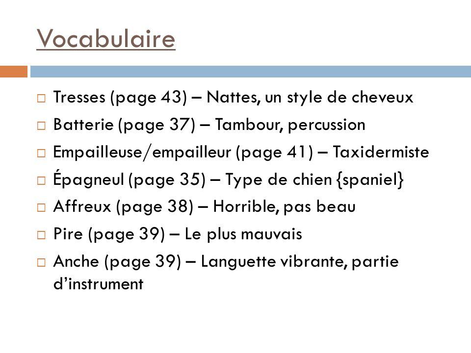 Vocabulaire Tresses (page 43) – Nattes, un style de cheveux