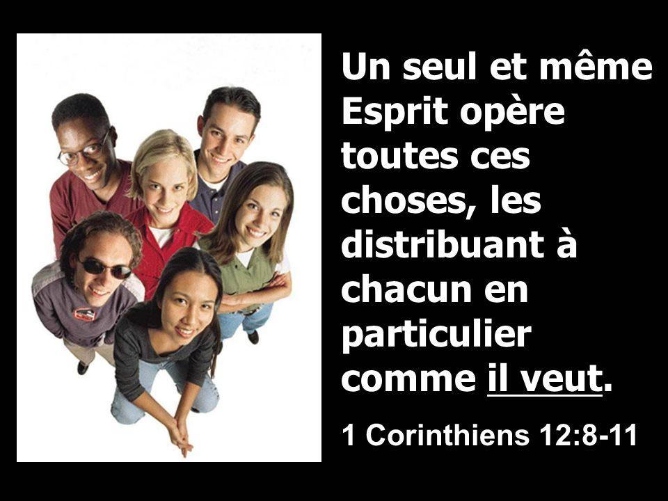 Un seul et même Esprit opère toutes ces choses, les distribuant à chacun en particulier comme il veut.