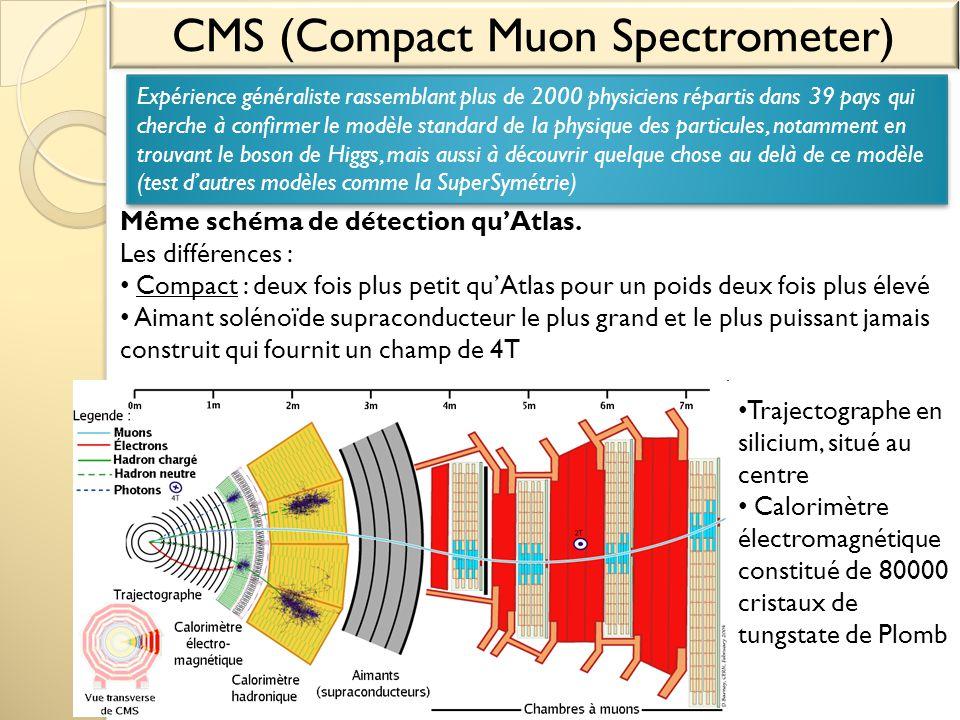 CMS (Compact Muon Spectrometer)