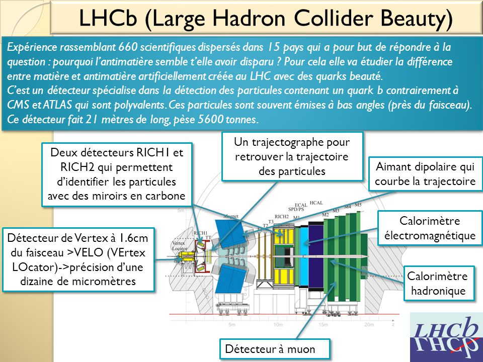 LHCb (Large Hadron Collider Beauty)