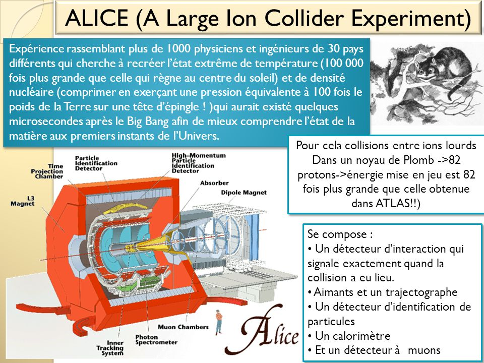 ALICE (A Large Ion Collider Experiment)